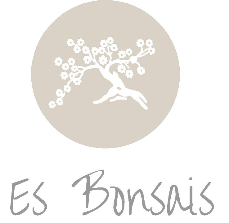 Es Bonsais - Floristería online